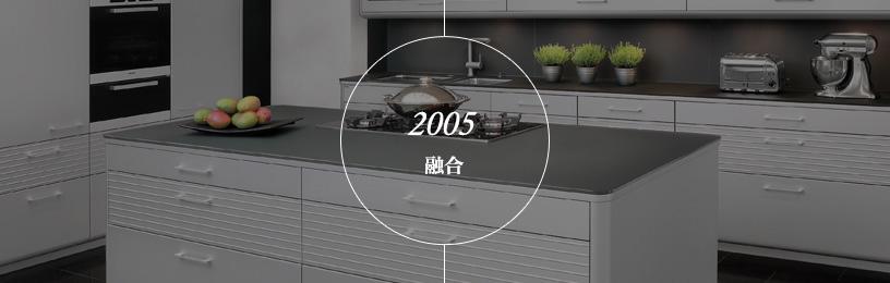 2005年融合